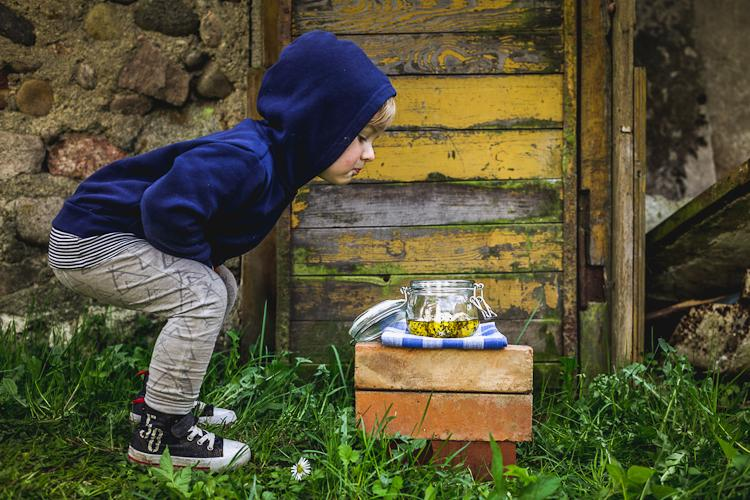 Naturalne przepisy na domowy jogurt i jogurt grecki