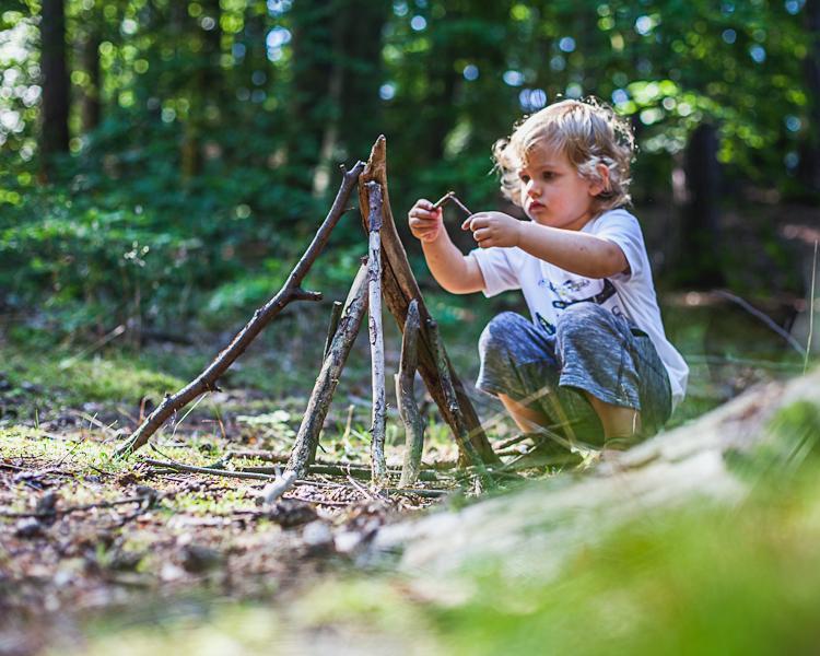 chłopiec buduje szałas z patyków w trójmiejskim lesie