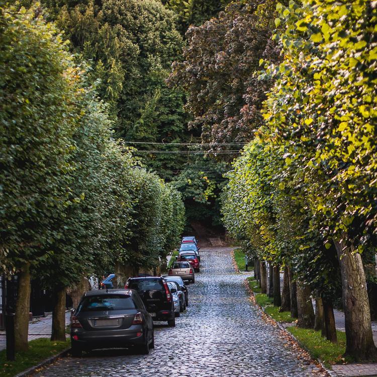 widok na ulicę Leśną w Starej Oliwie