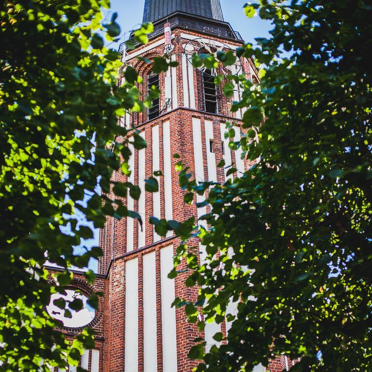 ceglana wieża neo gotyckeigo kościoła o. Cystersów w Starej Oliwie