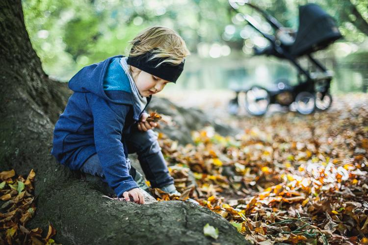 kid sitting on the tree and playing in the park with leafs