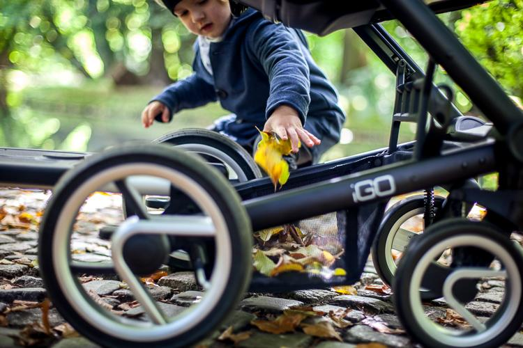 kid playing in the park with leafs on the stroller