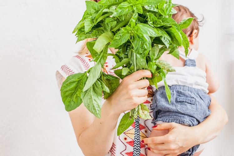 świeże zioła w eko delikatesach Oficyna w centrum Gdyni