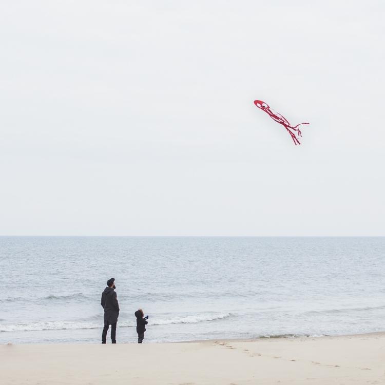 tata puszcza latawca ośmiornicę z synkiem na plaży